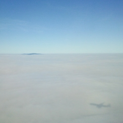 Sailing Towards Doha